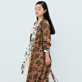 [Fairy tale] Robe brown navy